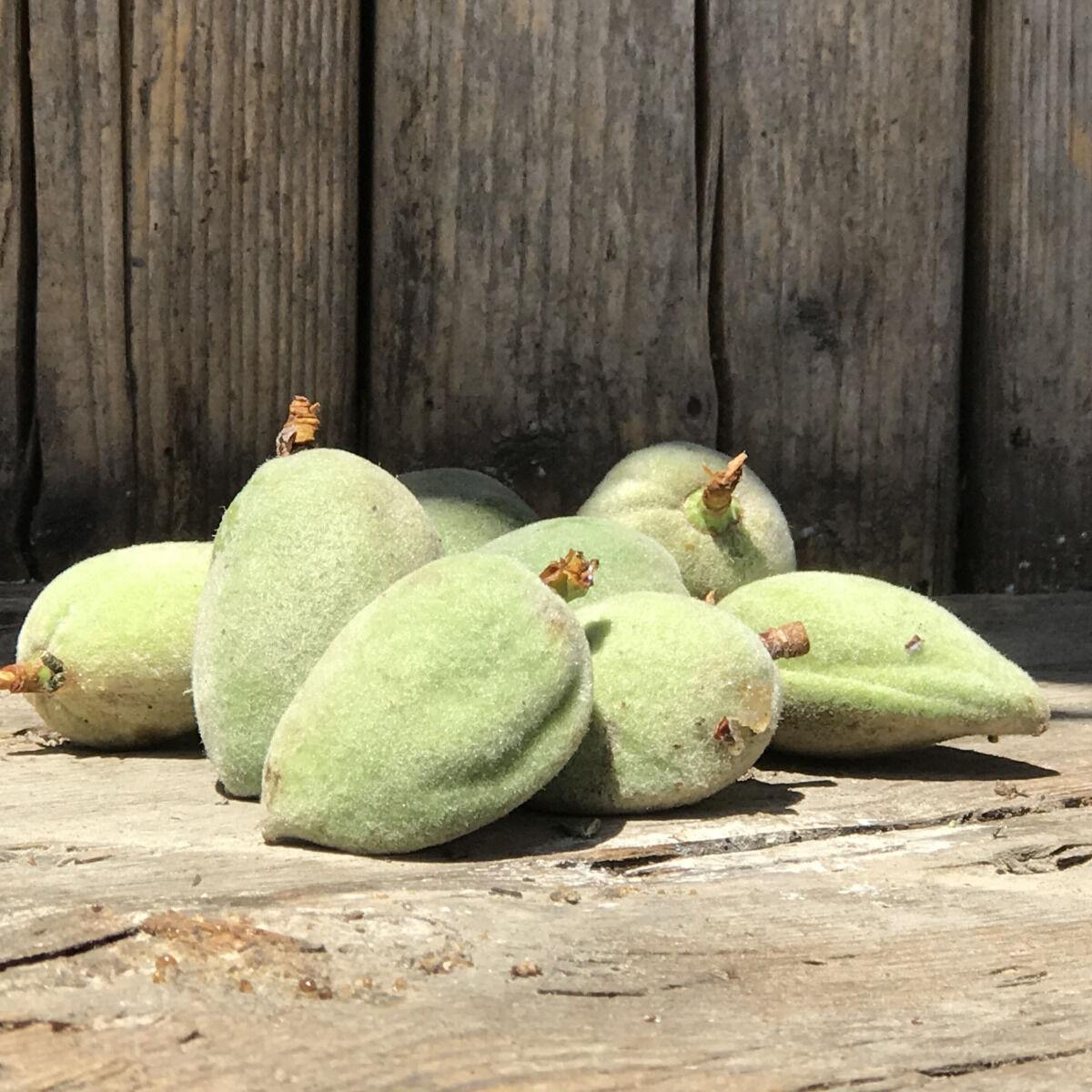 La Boite à Herbes Amandes Douces bio - 100g