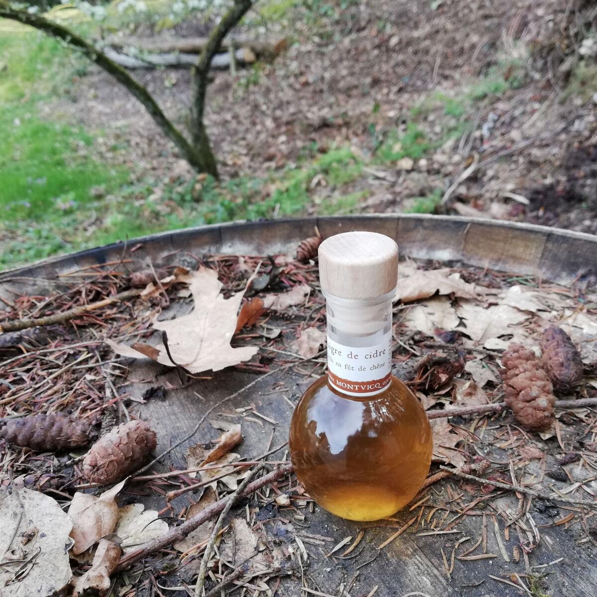 Vinaigres de la Carrière Vinaigre de Cidre bio Vieilli en Fût de Chêne - 100 ml