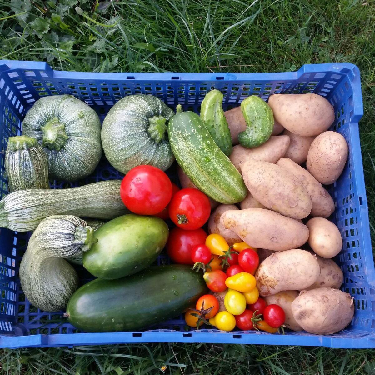 La Ferme Boréale Panier De Fruits Et Légumes De Saison