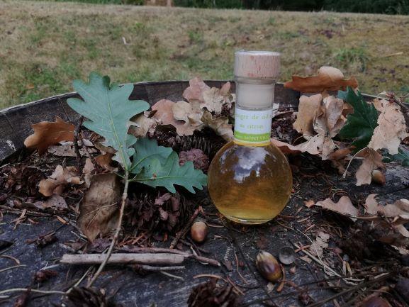 Vinaigres de la Carrière Vinaigre De Cidre Au Citron -100 Ml-