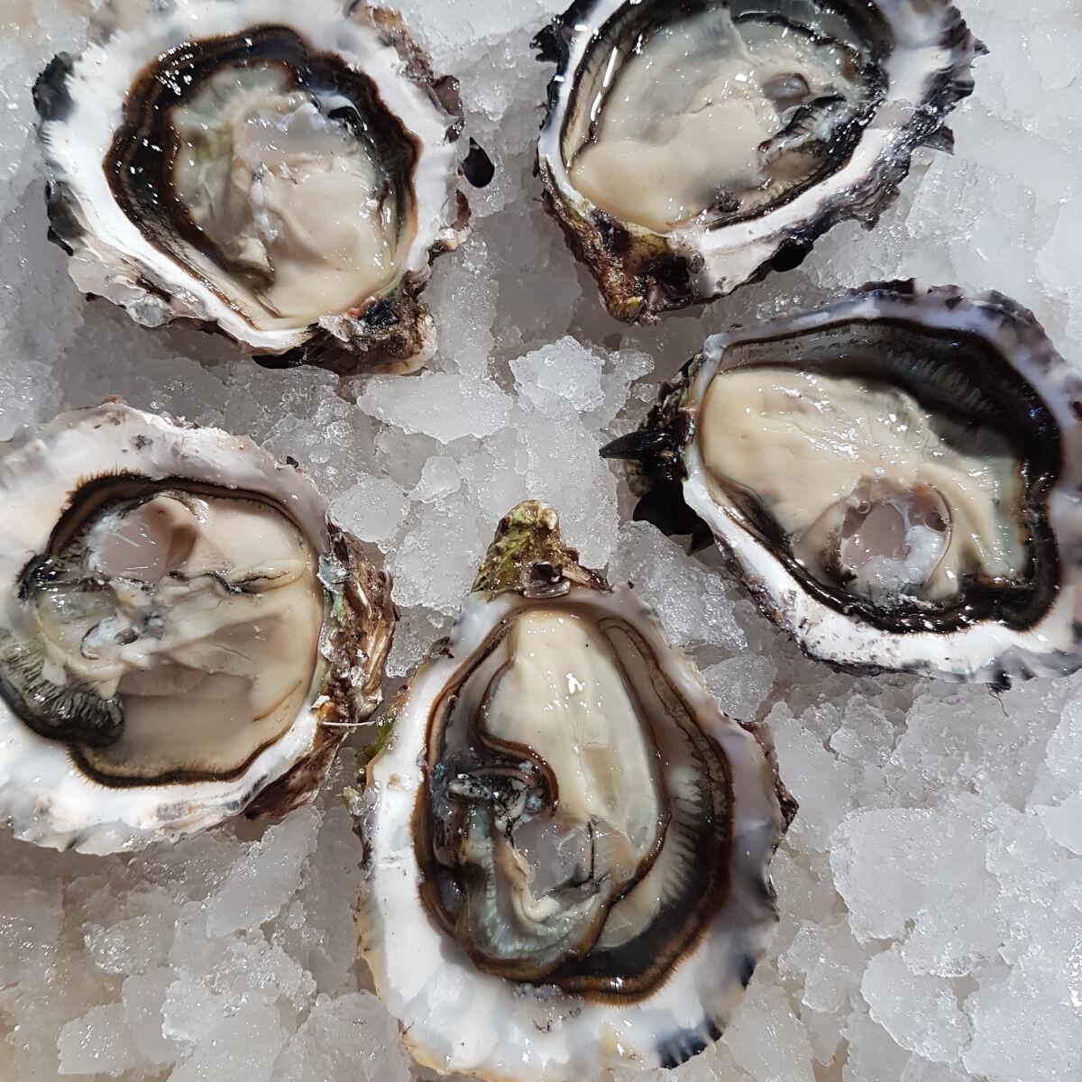 Camargue Coquillages La Perle De Camargue Huîtres Creuses N°3 Bio - 15 Kg