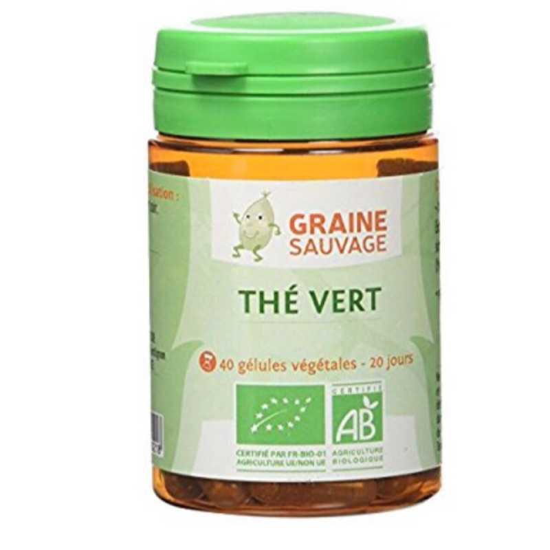 Graine Sauvage Thé vert Bio - 60 gélules - Graine Sauvage