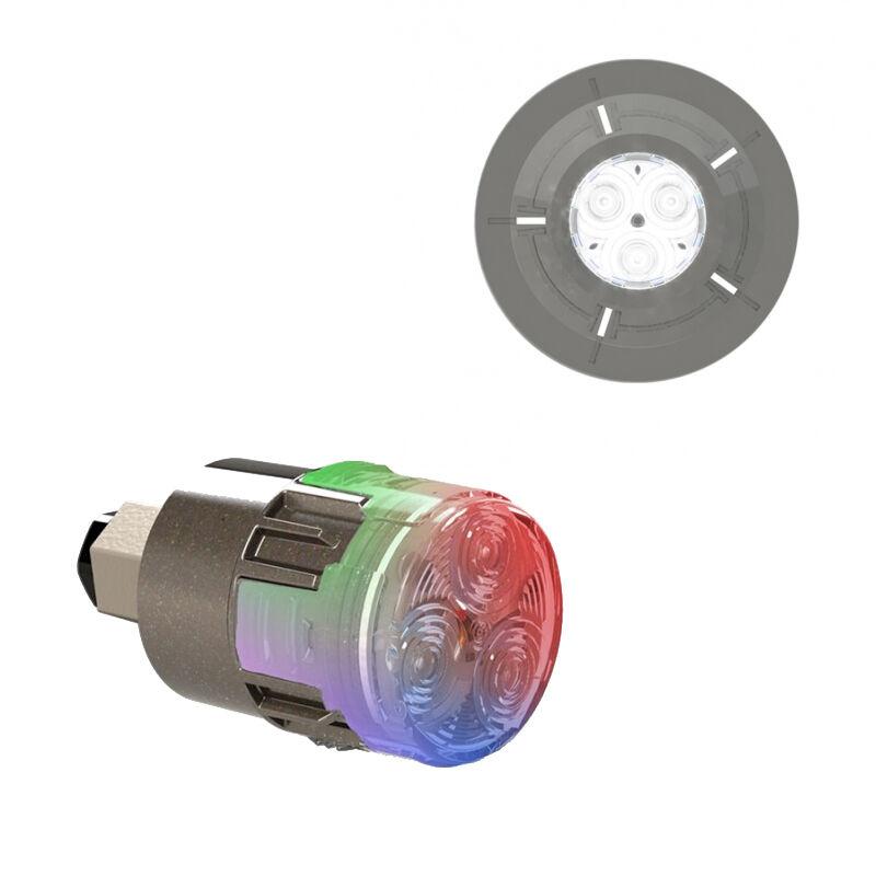 CCEI Projecteur LED couleur Mini-Brio X15 avec enjoliveur Mini-Chroma Anthracite