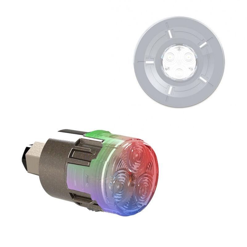 CCEI Projecteur LED couleur Mini-Brio X15 avec enjoliveur Mini-Chroma Gris