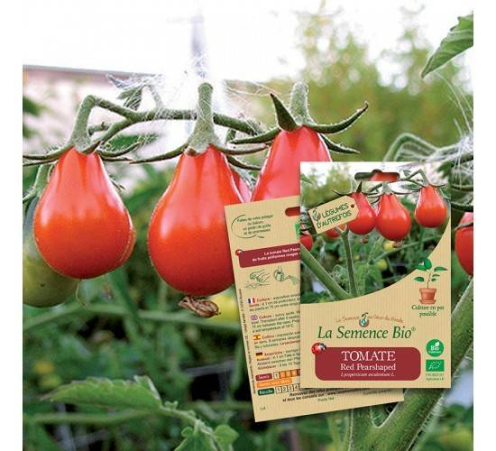 La Semence Bio Graines de TOMATE Red pearshaped BIO