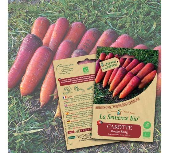 La Semence Bio Graines de CAROTTE rouge Sang BIO