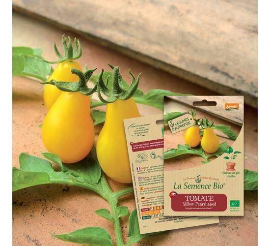 La Semence Bio Graines de TOMATE Yellow pearshaped BIO
