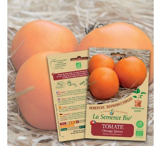 La Semence Bio Graines de TOMATE Orange Queen BIO