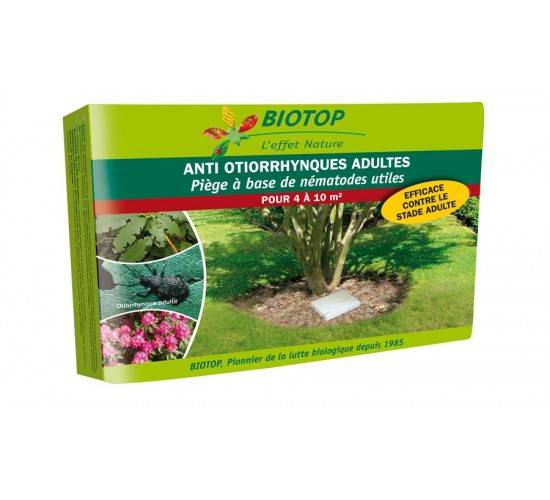 Biotop Piège à otiorrhynque adultes à base de nématodes