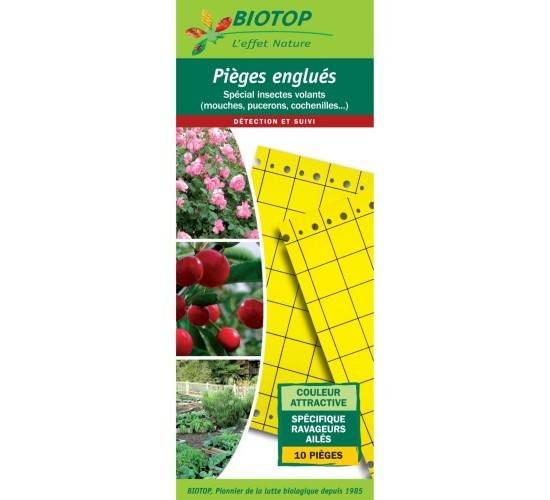 Biotop Piège chromatique mouches des fruits