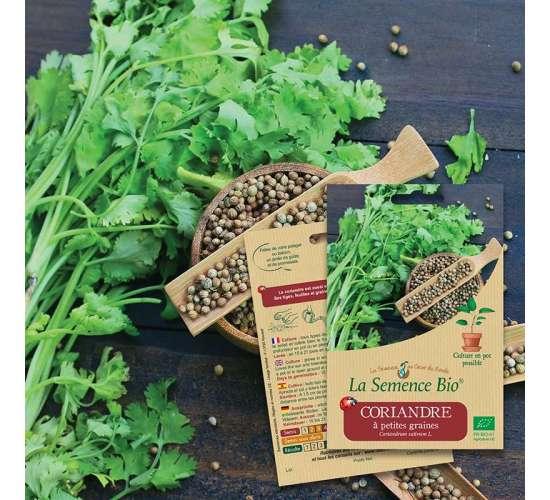 La Semence Bio Graines de CORIANDRE à petites graines BIO