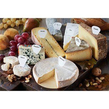 Boite de 16 étiquettes marque-fromages