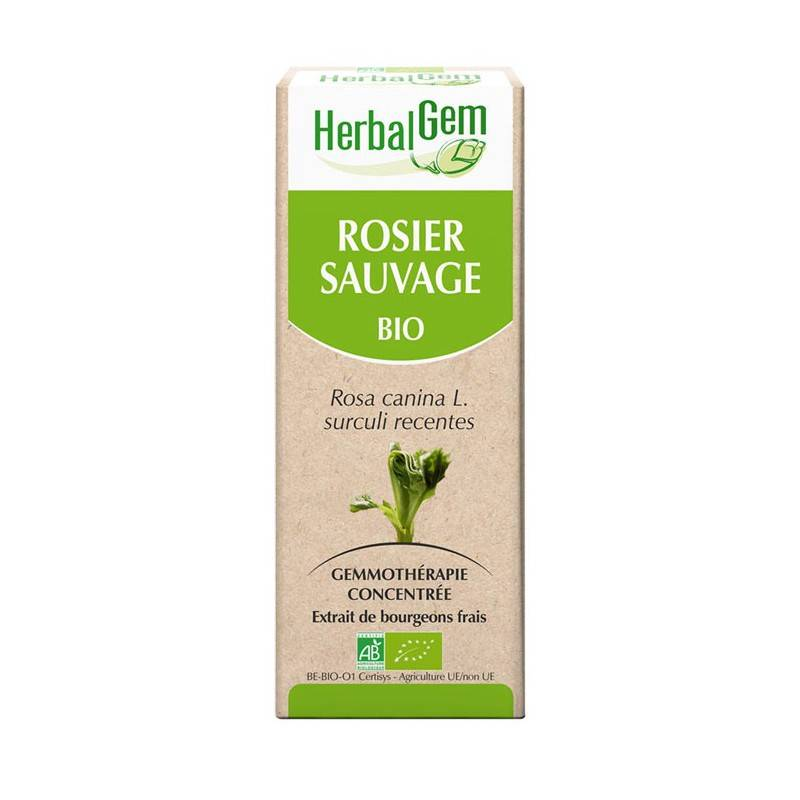 HerbalGem rosier sauvage bio - 30ml