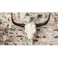 gdegdesign Statue design trophée cornes de taureau blanc et noir - Nino <br /><b>169.00 EUR</b> gdegdesign