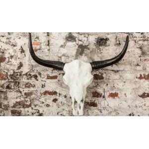 gdegdesign Statue design trophée cornes de taureau blanc et noir - Nino - Publicité