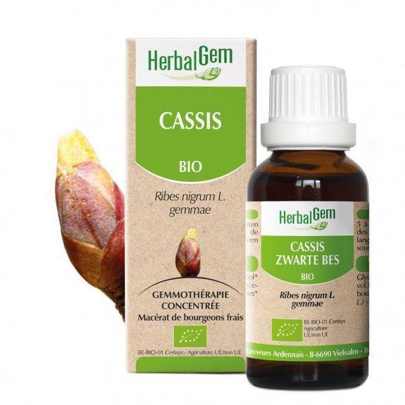 Herbalgem Cassis Bio 30ml bourgeons Macérat concentré de bourgeons Bio