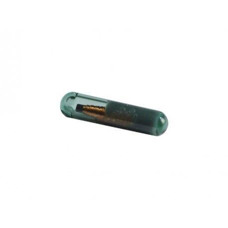 CAME Bulbe transpondeur en verre pour TSP01 CAME TAG
