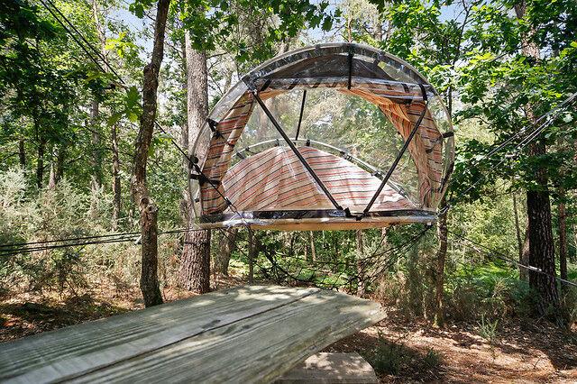 Wonderbox Coffret cadeau Séjour en visiobulle au cur d'un site naturel préservé du Morbihan - Wonderbox