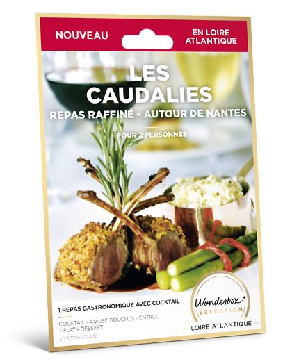 Wonderbox Coffret cadeau Les Caudalies repas raffiné - Autour de Nantes - Wonderbox