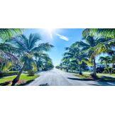 Etats-Unis: Miami
