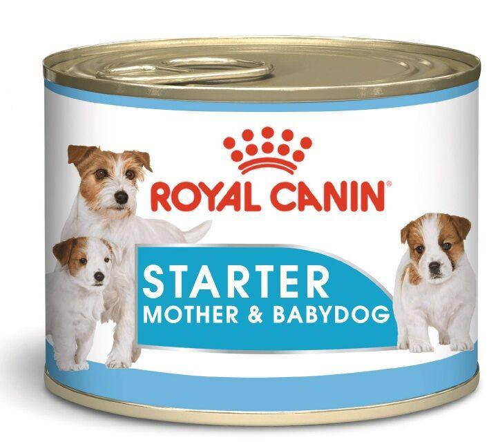 Royal Canin Starter Mousse Mother & Babydog pour chien - 195 g Par 2 paquets (24 x 195 g)