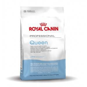 Royal Canin Chat Queen 34 2 x 10 kg