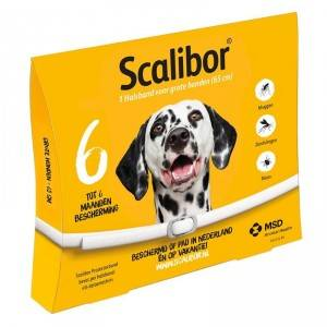 Scalibor Collier Scalibor Large pour Chien  Par 5 unités