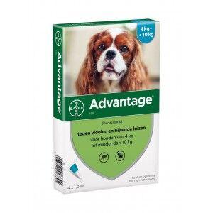Advantage Nr. 100 pour chien M 5 pièces