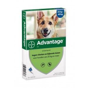 Advantage Nr. 400 pour chien XL Par paquet