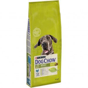 Dog Chow Adult large breed dinde et riz pour chien 2 x 14 kg