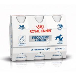 Royal Canin Veterinary Diet Royal Canin Veterinary Recovery Liquid pour chien et chat 3 x 200 ml