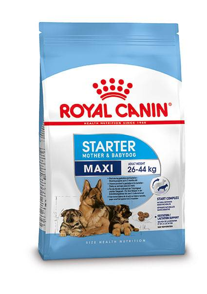 Royal Canin Maxi Starter Mother & Babydog pour chiot 4 kg