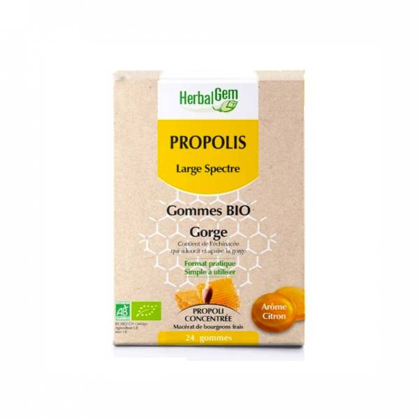 Herbalgem Propolis Large Spectre Gorge Gommes Bio 24 gommes