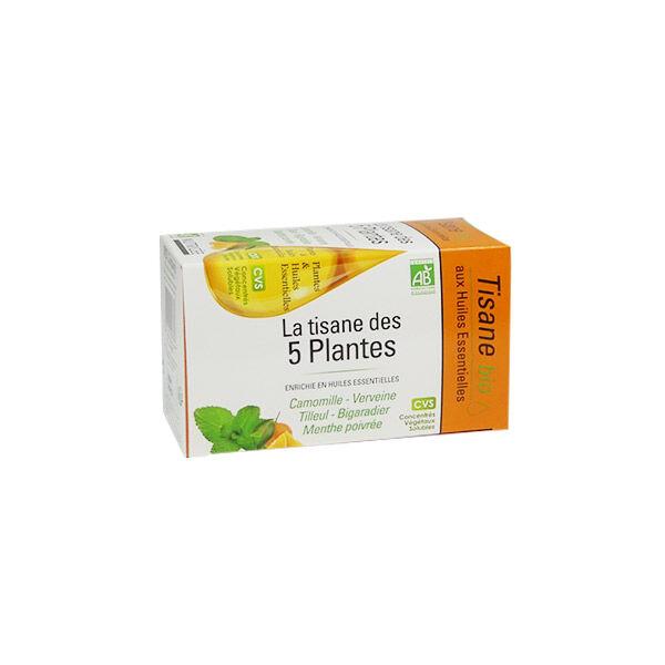 Nutrigée Tisane Bio 5 Plantes 20 sachets