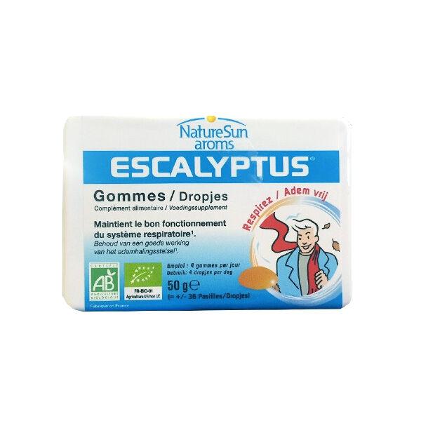 NatureSun Aroms Escalyptus Bio Gommes 36 Pastilles