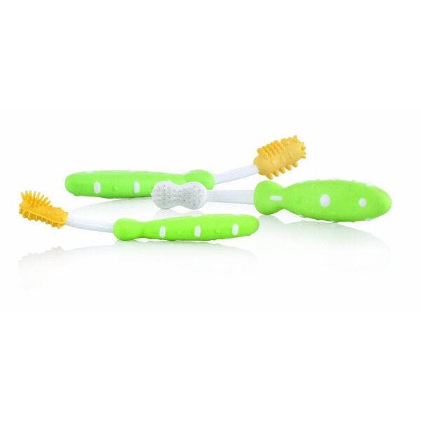 Nuby Set Evolutif Brosse à Dents Vert +3 mois