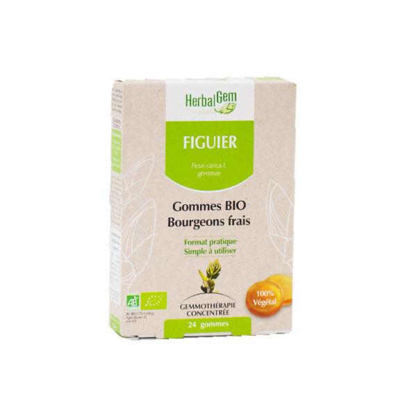 Herbalgem Figuier Gommes Bio Bourgeons Frais 24 Gommes