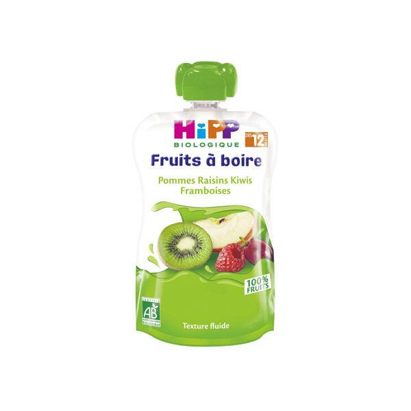 Hipp Bio Gourde Fruits à Boire Pommes Raisins Kiwis Framboises +12m 120ml
