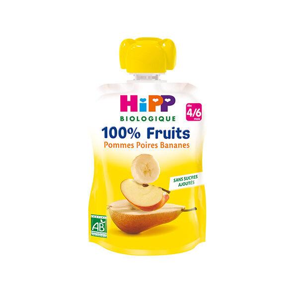 Hipp Bio 100% Fruits Gourde Pommes Poires Bananes 4-6m 90g