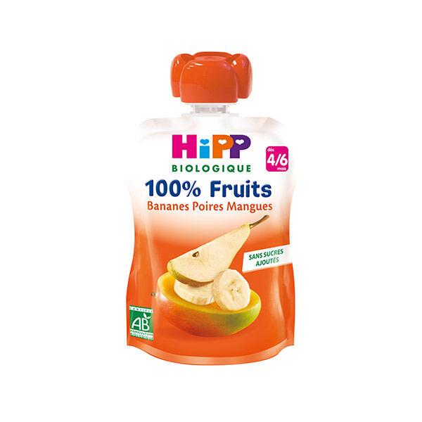 Hipp Bio 100% Fruits Gourde Bananes Poires Mangues 4-6m 90g