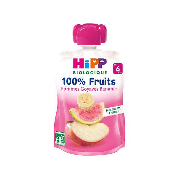 Hipp Bio 100% Fruits Gourde Pommes Goyaves Bananes +6m 90g