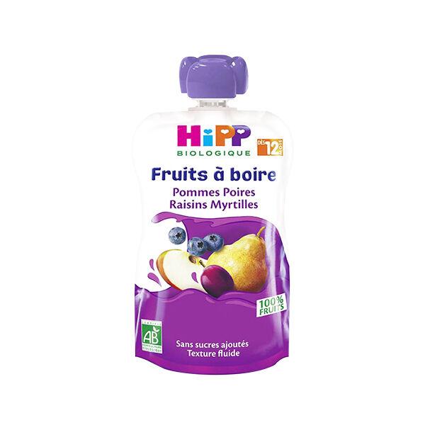 Hipp Bio Gourde Fruits à Boire Pommes Poires Raisins Myrtilles +12m 120ml