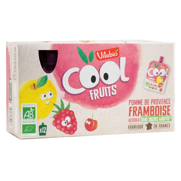 Vitabio Cool Fruits Pomme Framboise + Acérola 12 x 90g