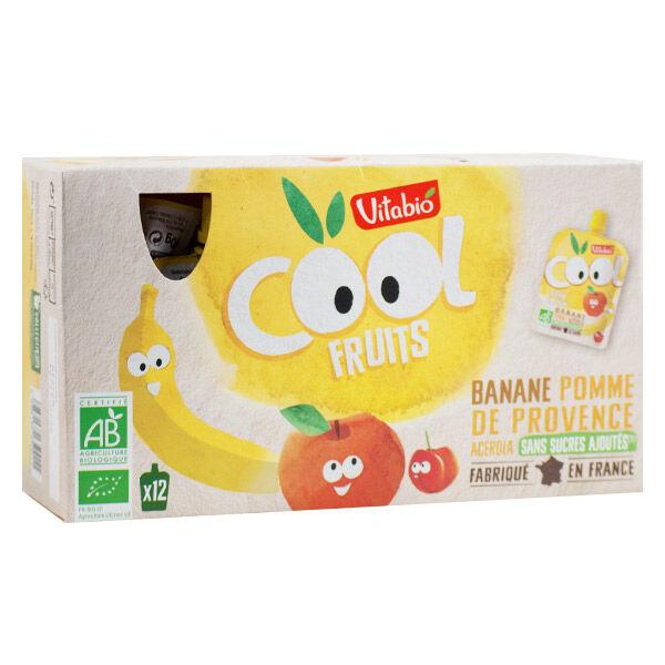Vitabio Cool Fruits Pomme Banane + Acérola 12 x 90g