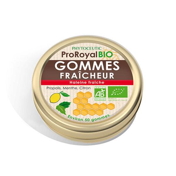 Pro Royal Bio Gomme Fraicheur 50 gommes