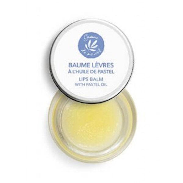Graine de Pastel Baume à Lèvres 7ml