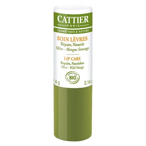 Cattier Soin Lèvres stick 4g
