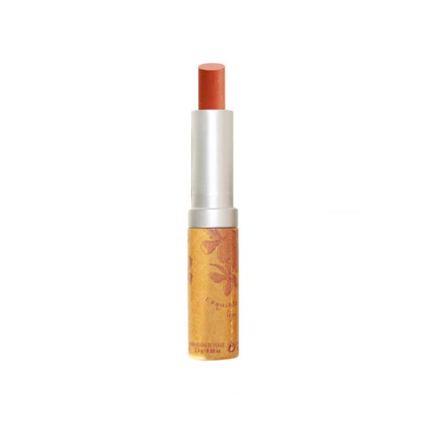Couleur Caramel Look Médina Edition Limitée Lèvres Sublimes Bio N°281 Dina 2,3g