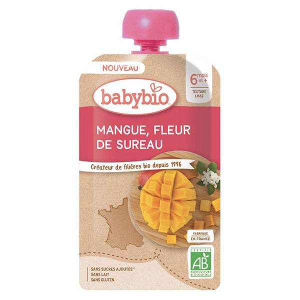 Babybio Fruits Gourde Mangue Fleur de Sureau +6m Bio 120g