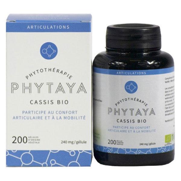 Phytaya Cassis Bio 200 gélules